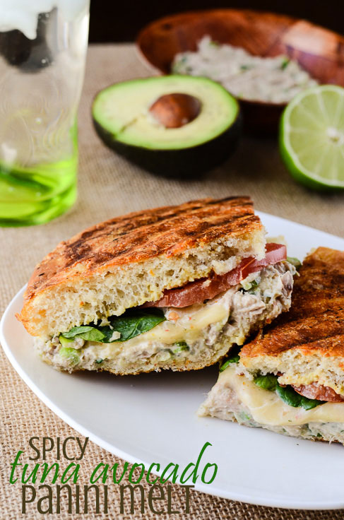 Spicy Tuna Melt Recipes — Dishmaps