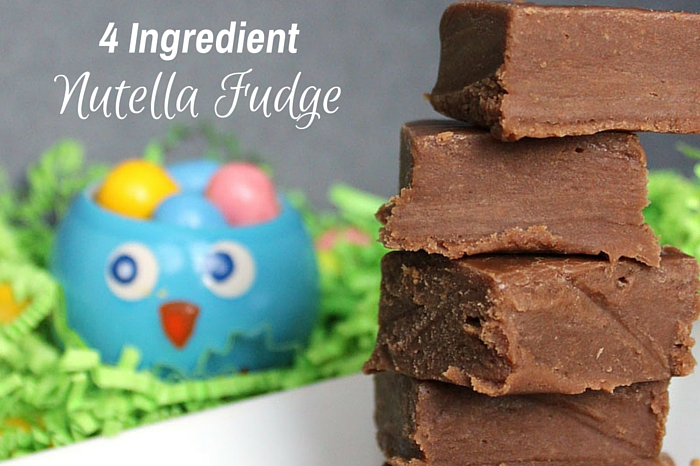 4 Ingredient Nutella Fudge