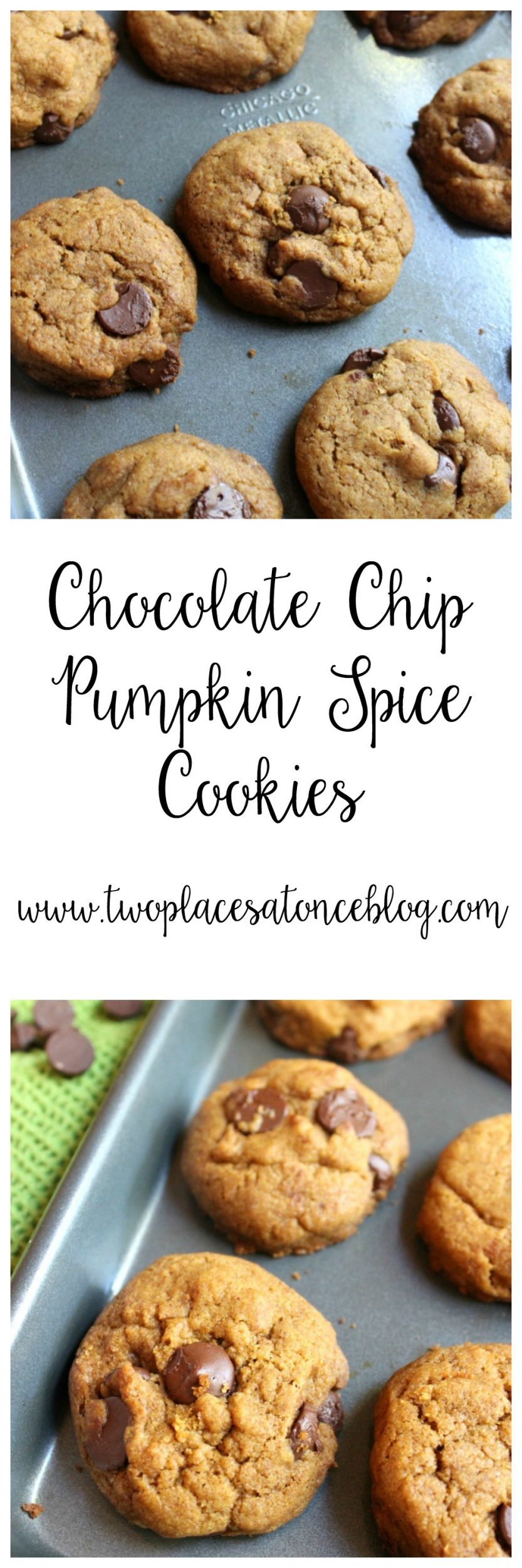Chocolate Chip Pumpkin Spice Cookies | My Cooking Spot
