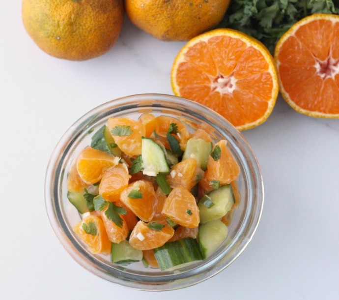 clementine salsa - 4